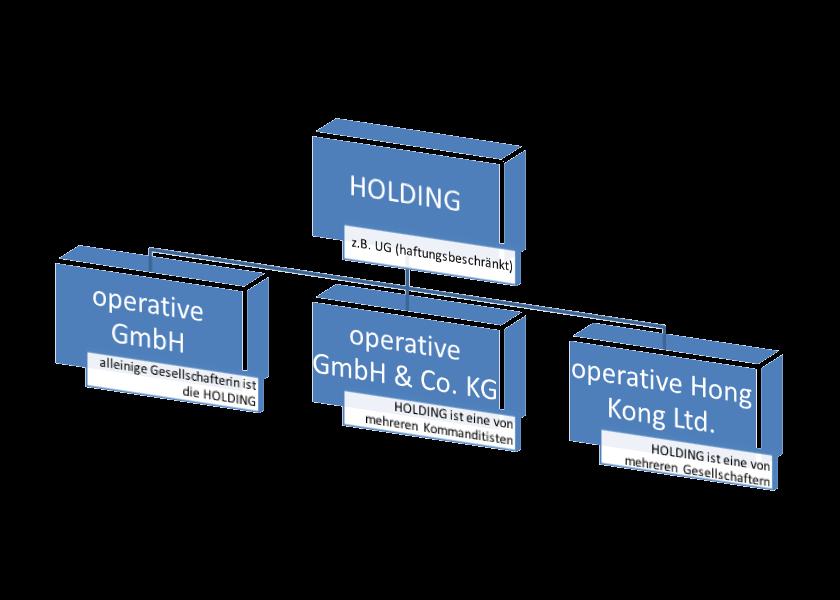 Holding-Struktur